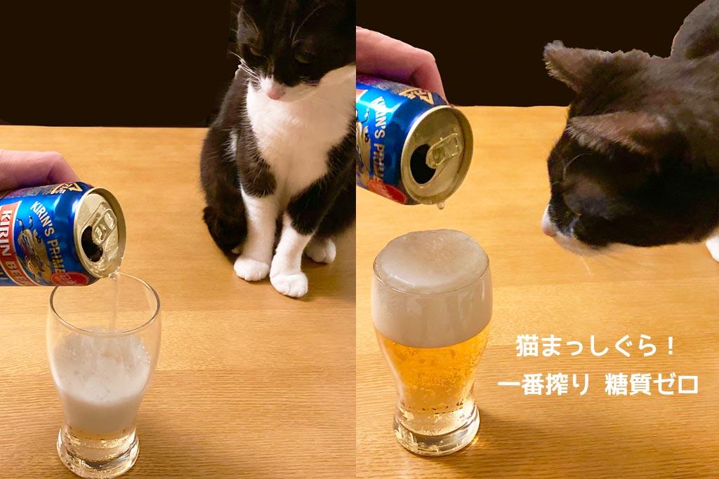 猫とも一番搾り 糖質ゼロ!