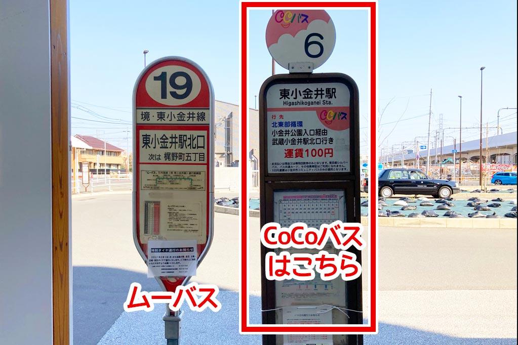 「CoCoバス」と「ムーバス」の停留所が並んでいます