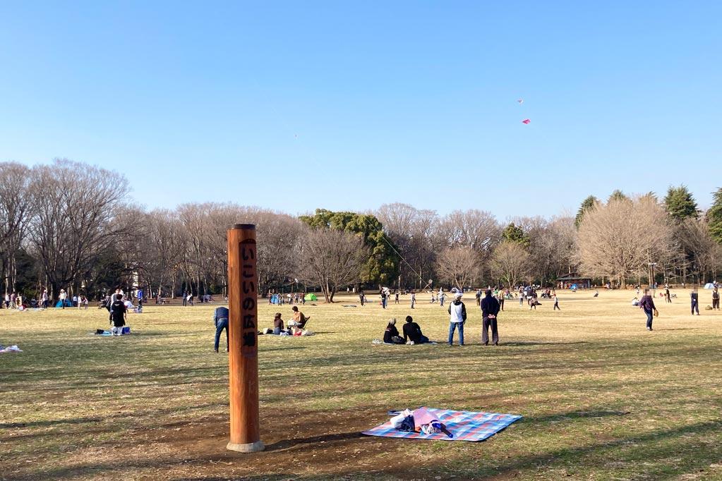 「いこいの広場」で遊ぶ人々