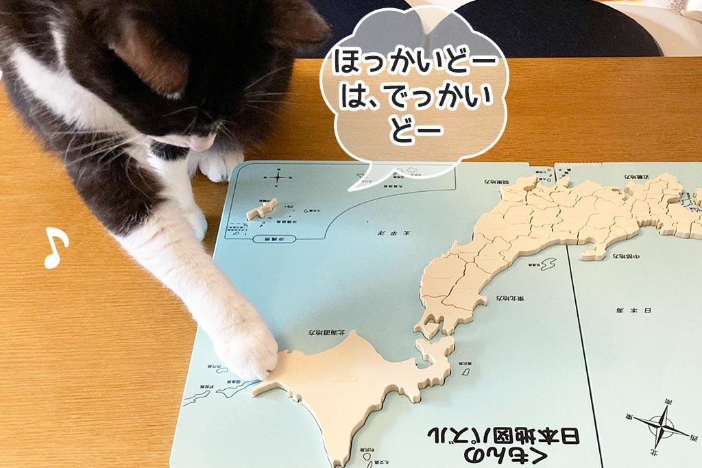 猫とくもんの日本地図パズル